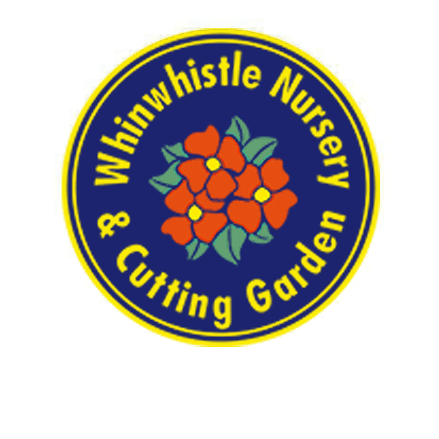 whinwhistle nursery